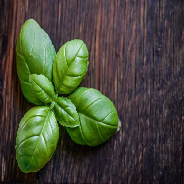 basil for instant pot