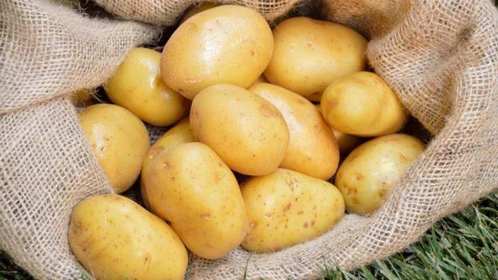 Medium and Large Potatoes