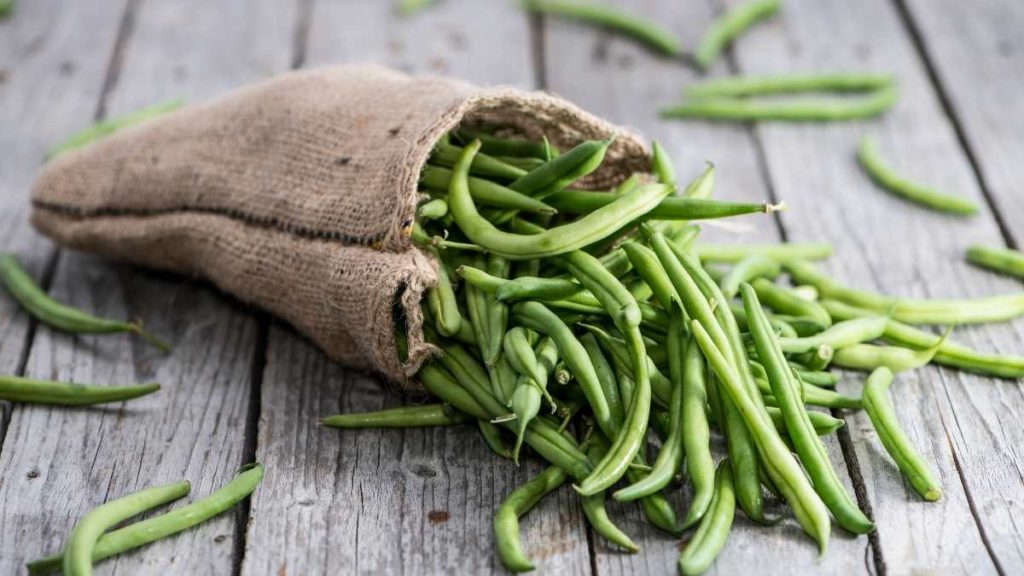Green Beans For 20 People - 10 Cups