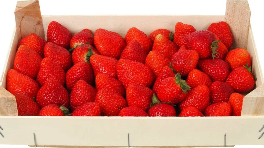 How do you make strawberries last longer in the refrigerator?