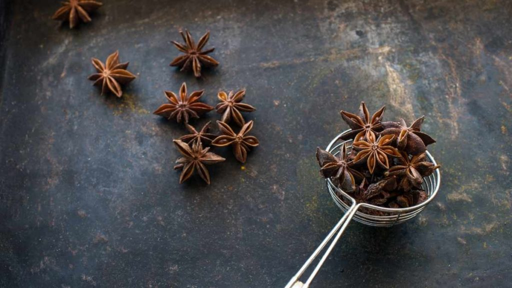 Can I use cloves instead of star anise