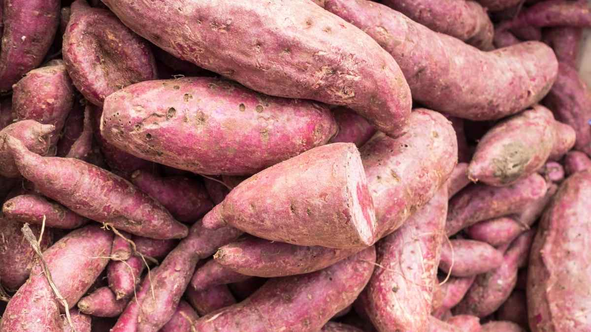 How many Yams per person for a Party